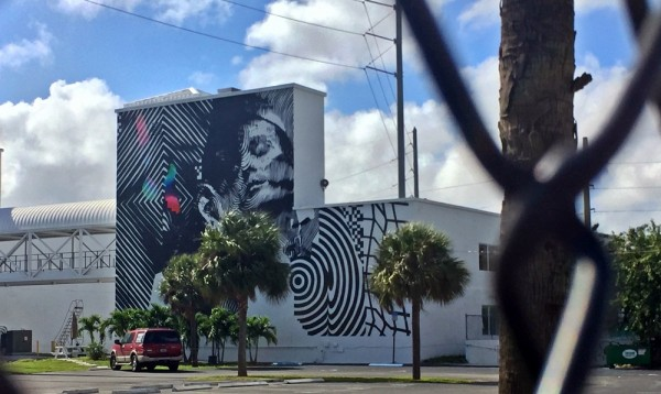 Wynwood Miami Street Art